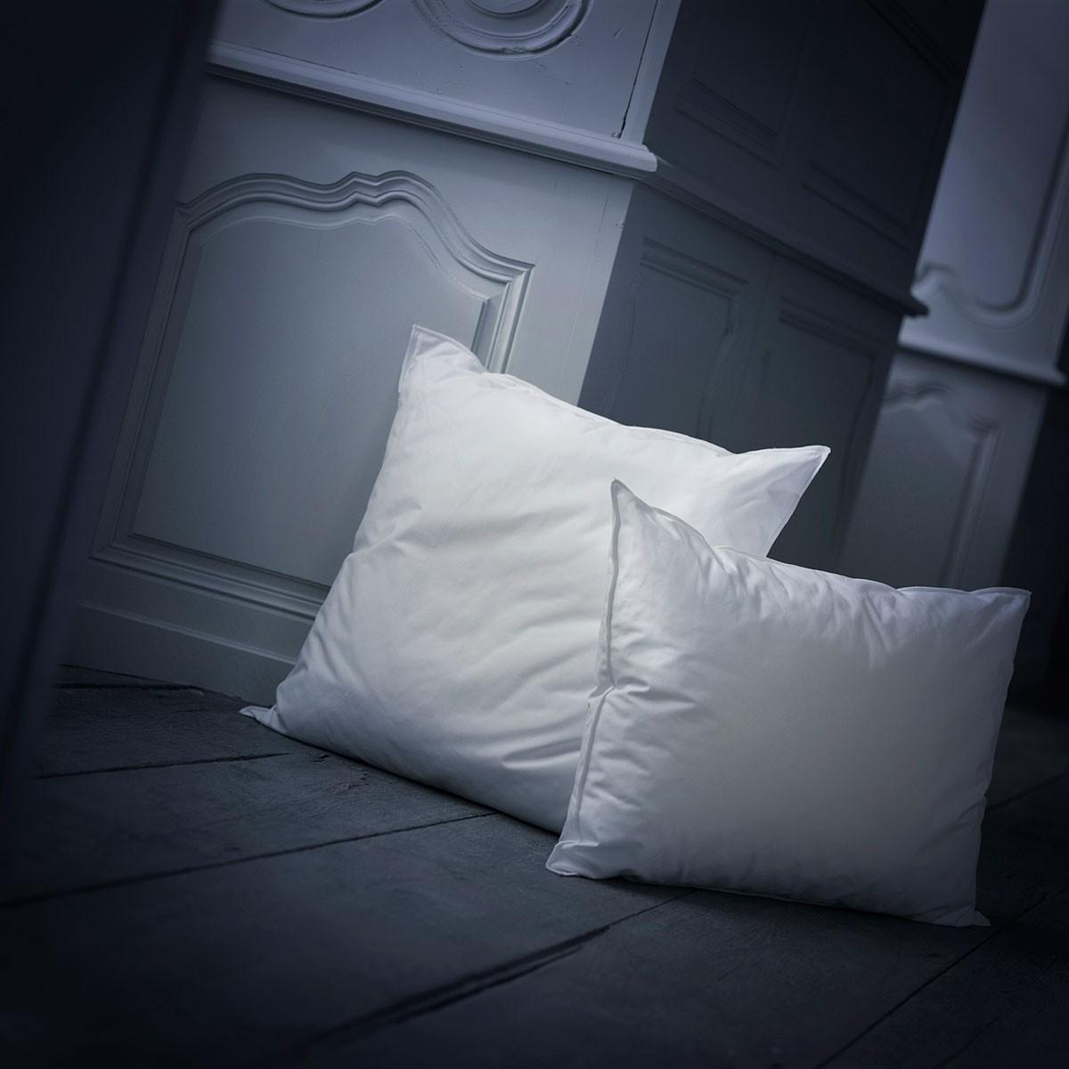 oreiller ferme mousse allure dumas paris. Black Bedroom Furniture Sets. Home Design Ideas